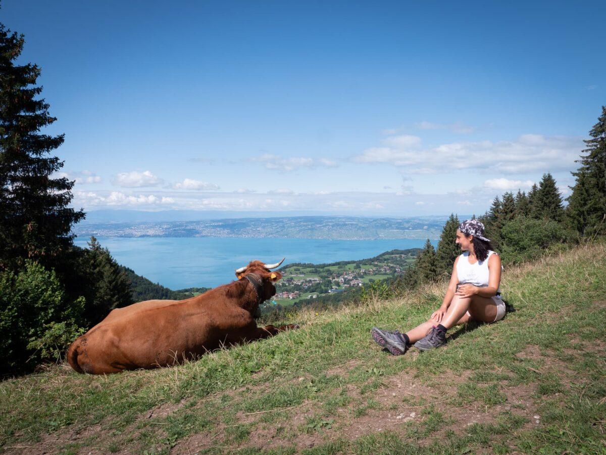 marion regardant une vache pendant une randonnee au lac leman